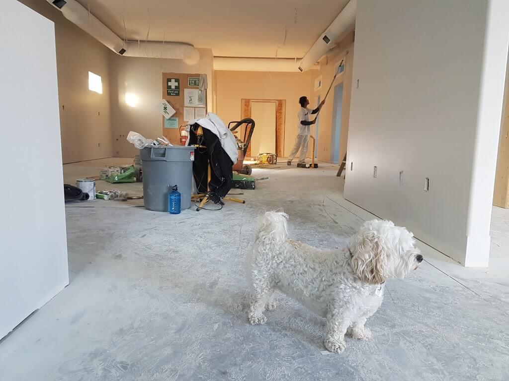 На фото изображен процесс ремонта в жилом помещении.