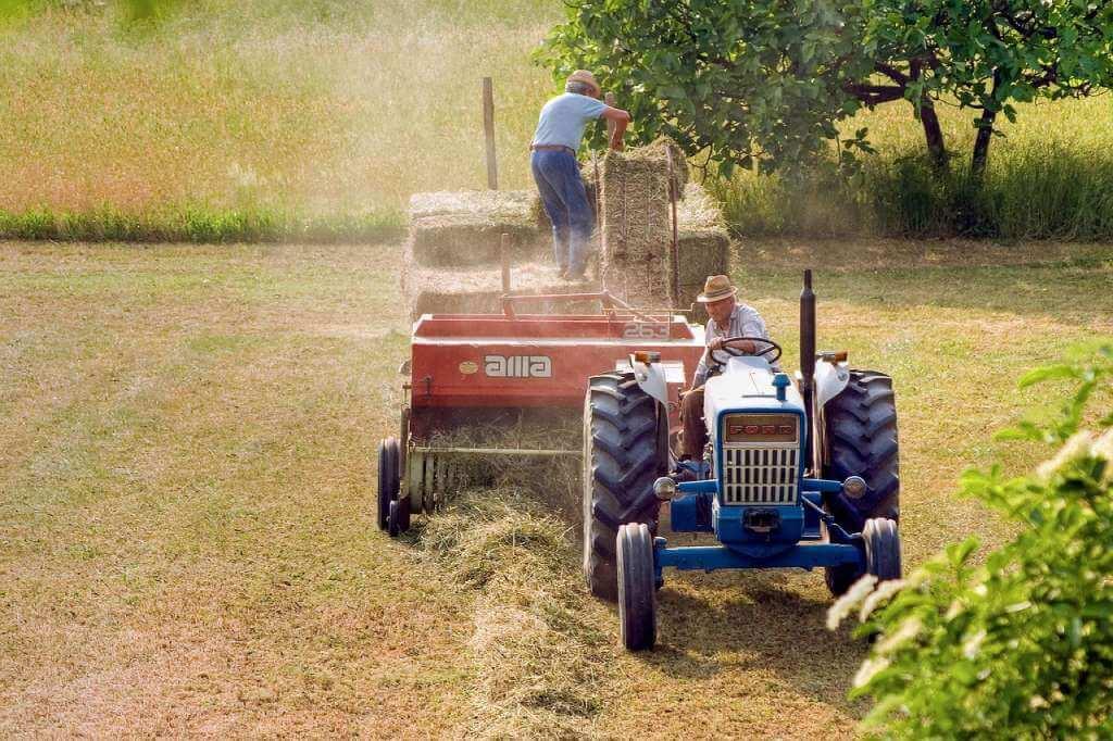 На фото изображены люди на тракторе.